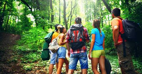 group-teens-exploring-woods_730x384.jpg